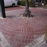 Challenge Brick Paving Perth - Subiaco Carpark - 05